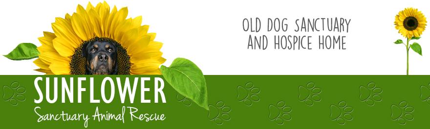 Sunflower Sanctuary Animal Rescue